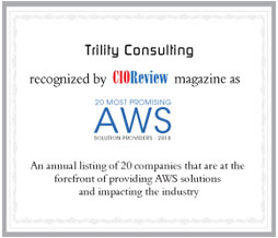 Trility Consulting